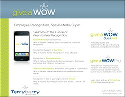 Give a WOW Brochure