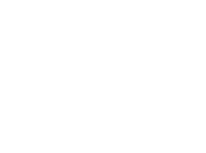 The Best and Brightest in Wellness